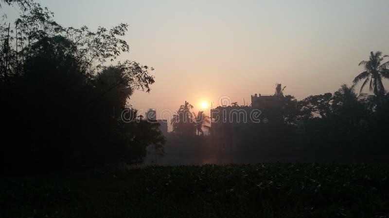 Природа неба и дерево и солнце стоковые фотографии rf