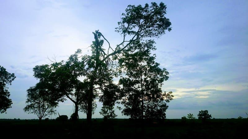 Природа, перемещение, ландшафт стоковое фото rf