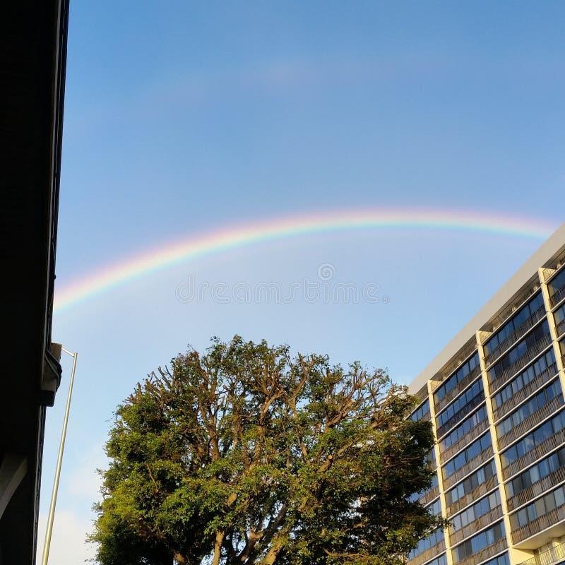природа радуги стоковое фото rf