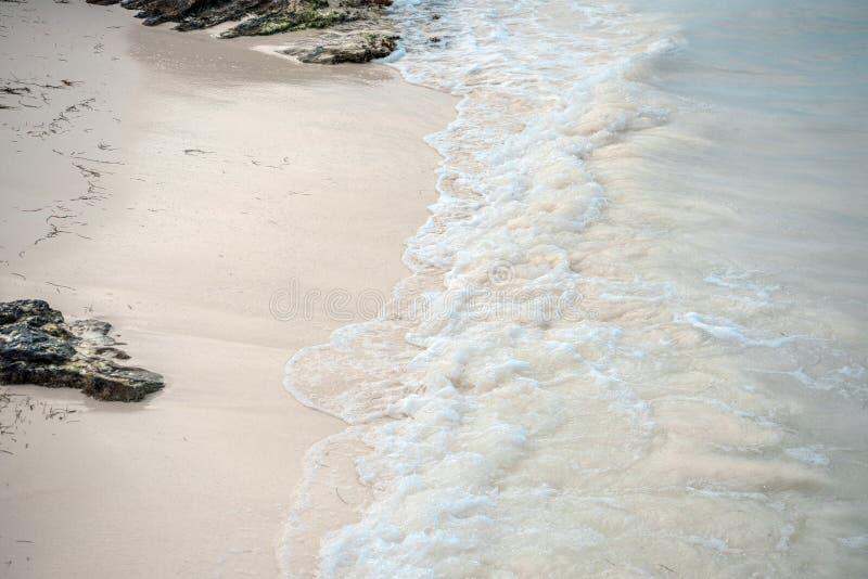 Природа рая, лето на тропическом пляже стоковая фотография rf