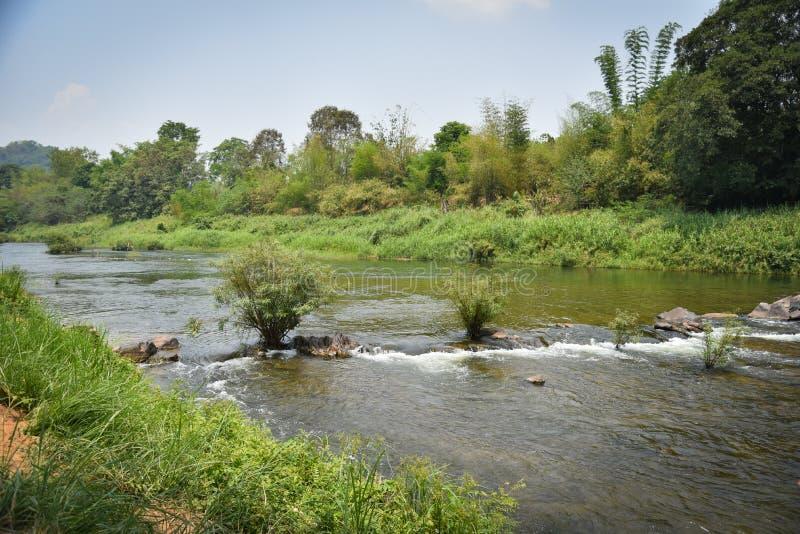 Природа реки в Таиланде стоковые изображения rf