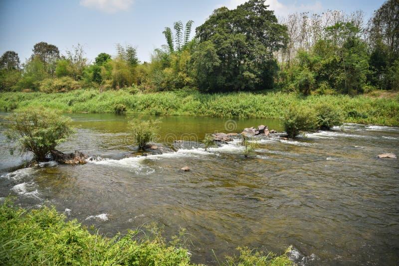 Природа реки в Таиланде стоковое фото