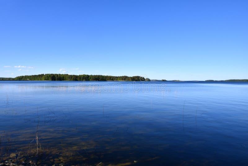 Природа середины лета в Финляндии стоковые фотографии rf