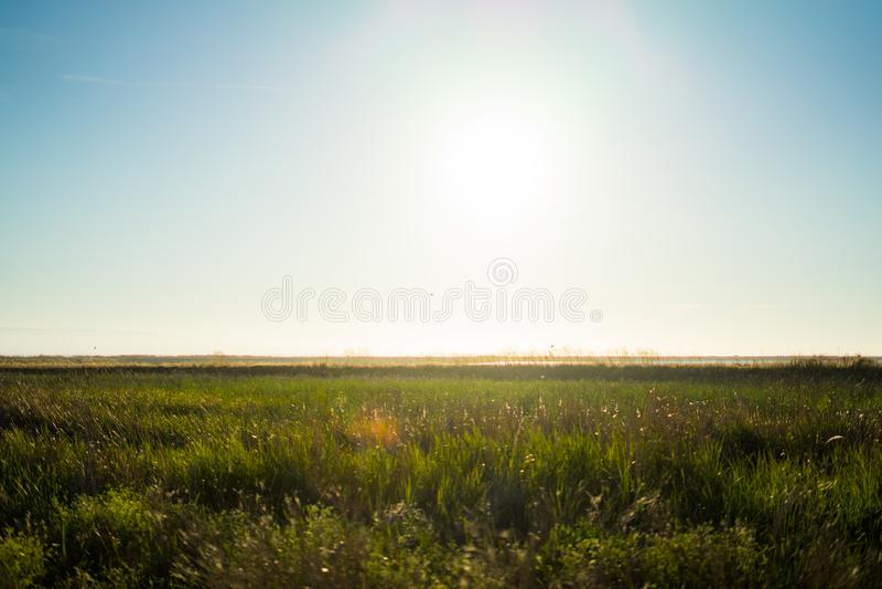 Природа с заходом солнца в парке графства Марины Alviso стоковое изображение