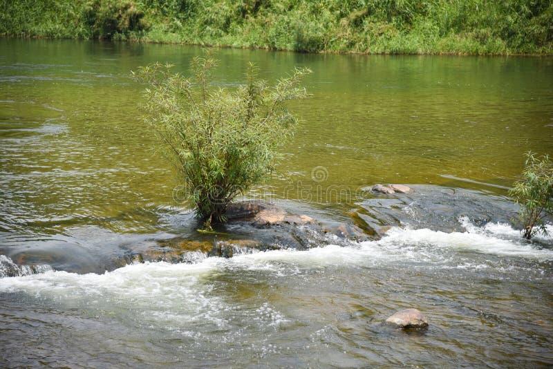 Природа Таиланд реки стоковая фотография rf