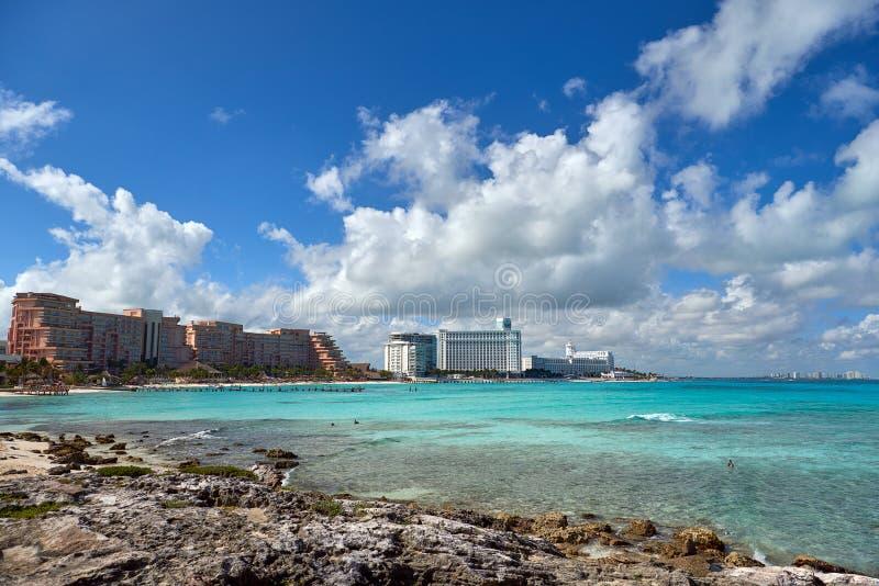 Природа, цапля и лето рая на тропическом пляже стоковые изображения
