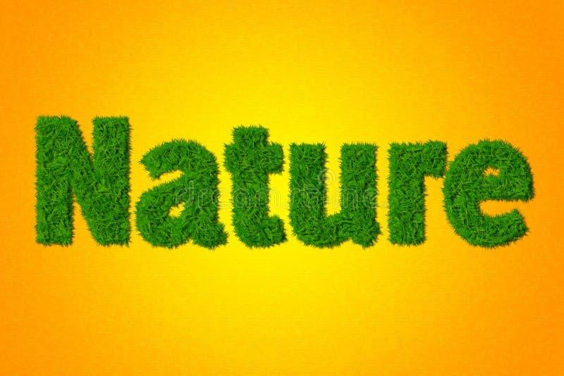 природа стоковые изображения