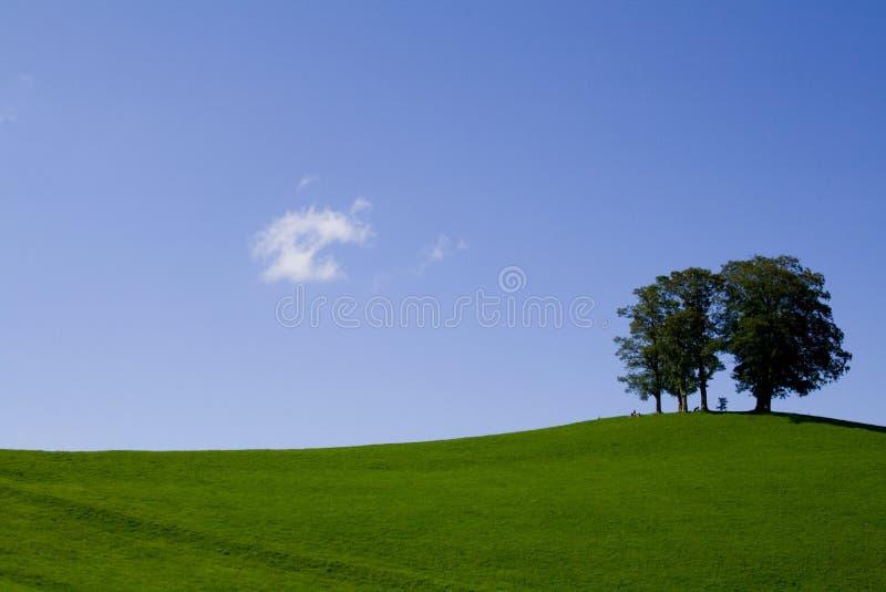 природа minimalism стоковое изображение rf