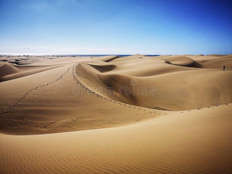 Природный заповедник дюн Maspalomas в Гран-Канарии, Испании стоковые фото