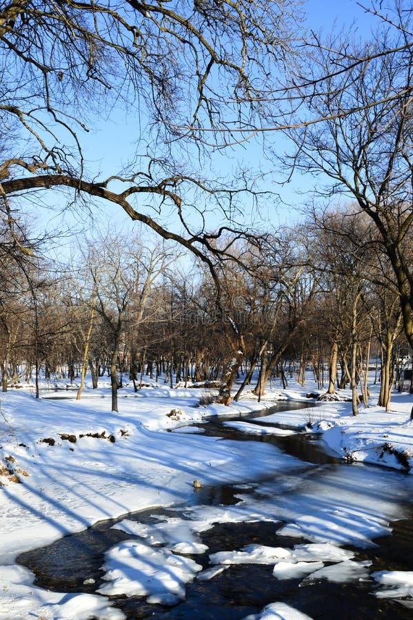 Природный заповедник заболоченного места Donian - Женевское озеро, WI стоковые изображения