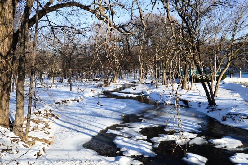 Природный заповедник заболоченного места Donian - Женевское озеро, WI стоковые фотографии rf