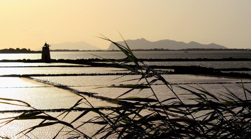 Природный заповедник Стагнио или природный заповедник Салин делло Стагно вблизи Марсала и Трапани, Сицилия стоковые фото