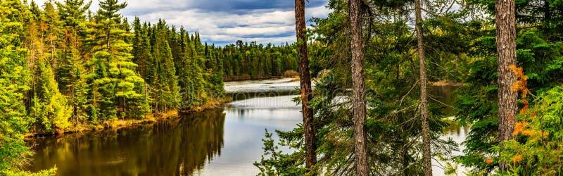 Природный парк заводи мельницы, большее Moncton, Нью-Брансуик, Канада стоковые изображения rf