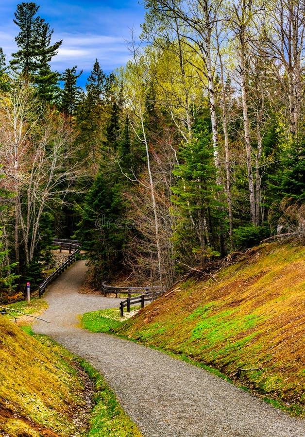 Природный парк заводи мельницы, большее Moncton, Нью-Брансуик, Канада стоковая фотография
