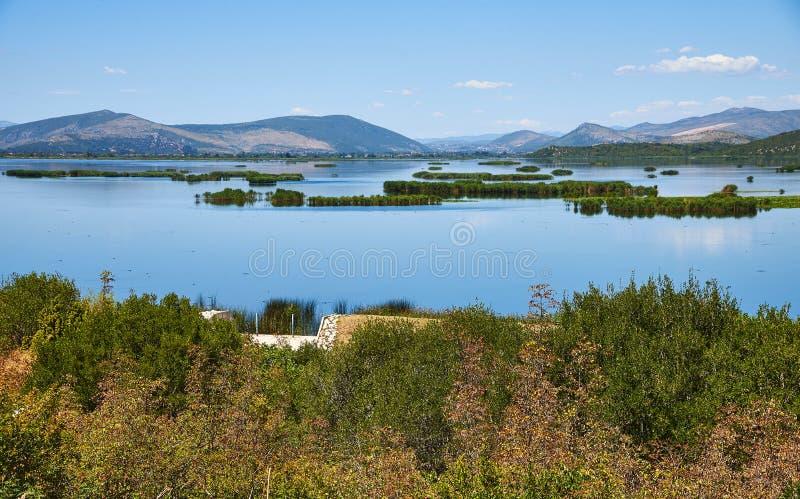 Природный парк Hutovo Blato около Мостара в Босния и Герцеговина стоковые изображения rf