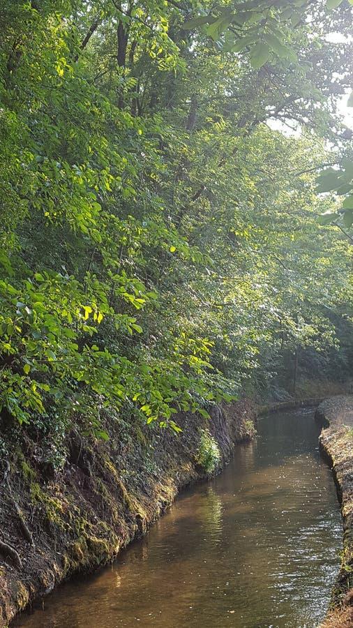 Природа в горах pyrinees стоковое изображение rf