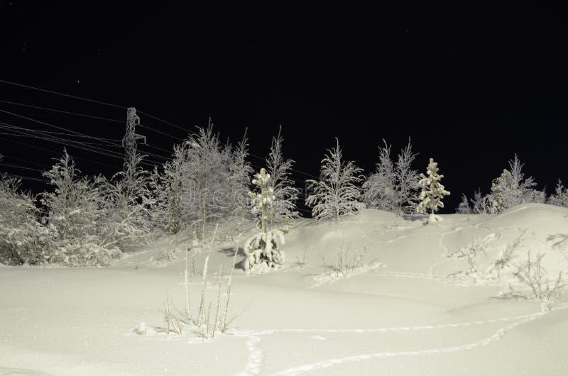 Природа в Hanty-Mansiysk Okrug стоковые изображения