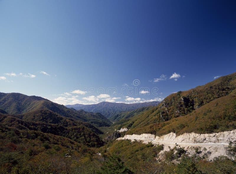 Природа и дорога стоковое изображение