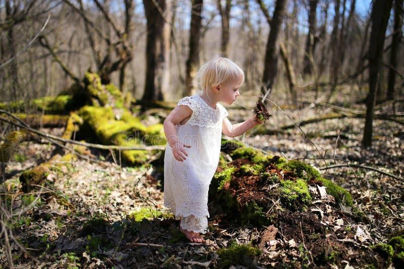 Природа маленькой девушки малыша исследуя в древесинах стоковое изображение rf