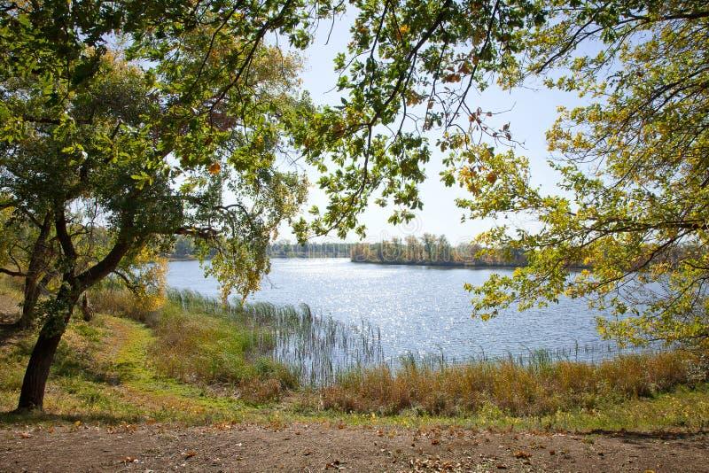 природа осени голубая длинняя затеняет небо стоковая фотография rf