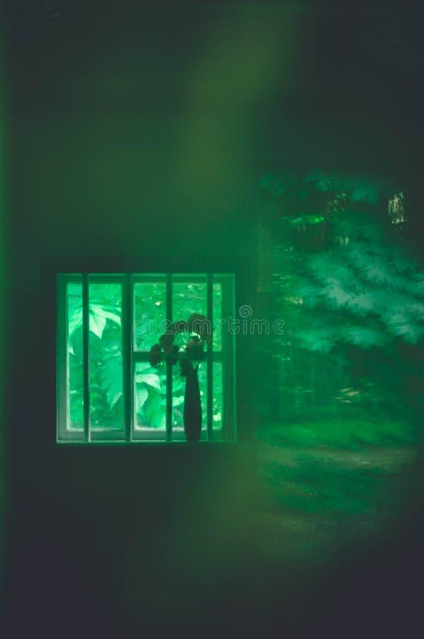 Природа от окна стоковые изображения rf