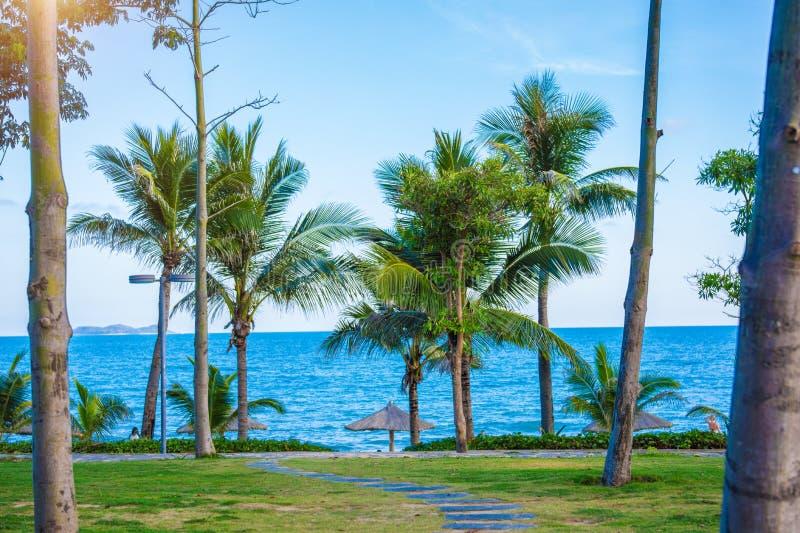 Пристаньте красивые покрыванные соломой зонтики к берегу и яркое море бирюзы, большое воссоздание и релаксацию рай тропический стоковое изображение rf
