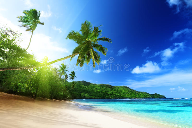 Пристаньте к берегу в времени захода солнца на острове Mahe в Сейшельских островах стоковое фото rf