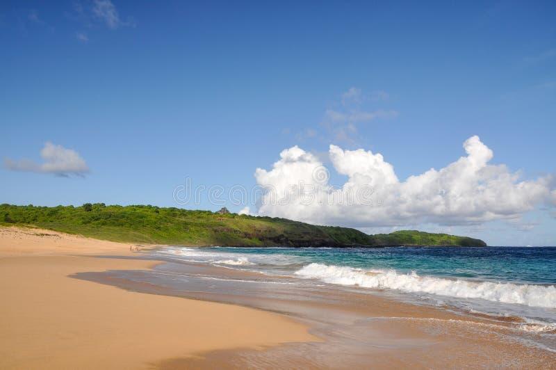 Download Пристаньте к берегу на Фернандо De Noronha, Pernambuco (Бразилия) Стоковое Изображение - изображение насчитывающей гулять, горизонтально: 37932015