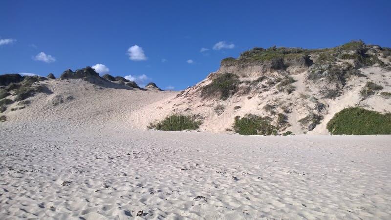 Пристаньте песчанные дюны и голубое небо к берегу - горизонтальные стоковое изображение