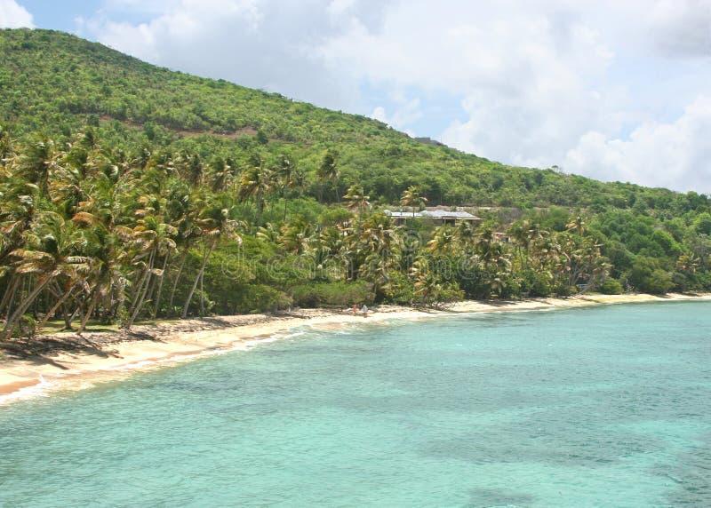 пристаньте тропическое к берегу стоковое изображение