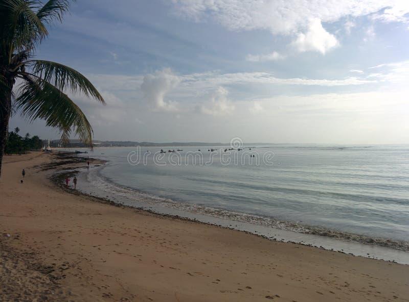 пристаньте утро к берегу стоковая фотография rf