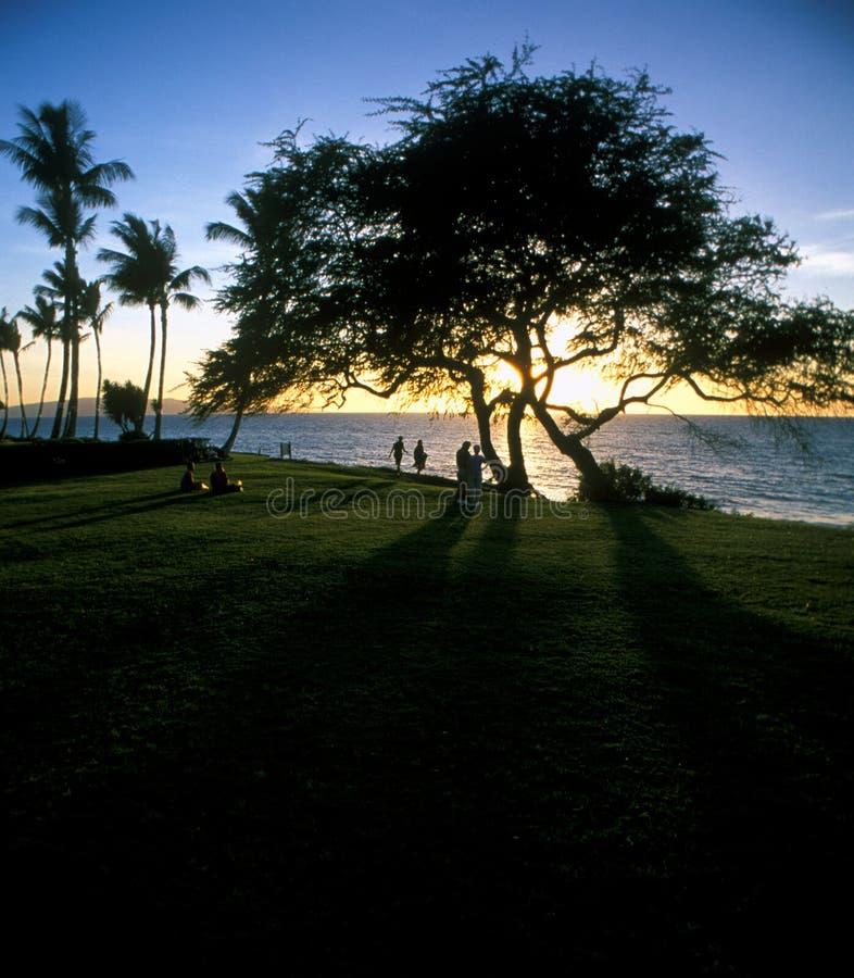 пристаньте hawaian заход солнца к берегу стоковая фотография rf