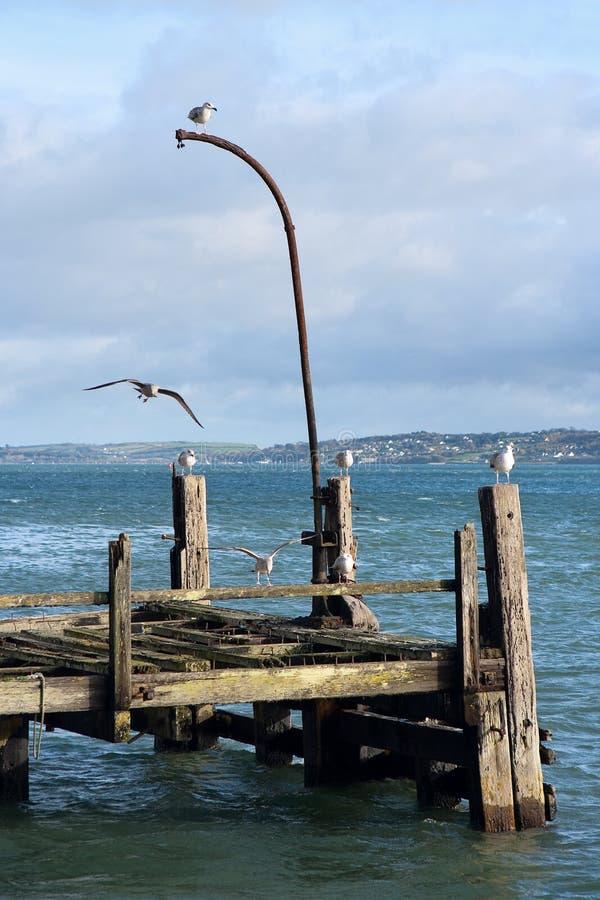 пристань Ирландии cobh старая стоковое фото