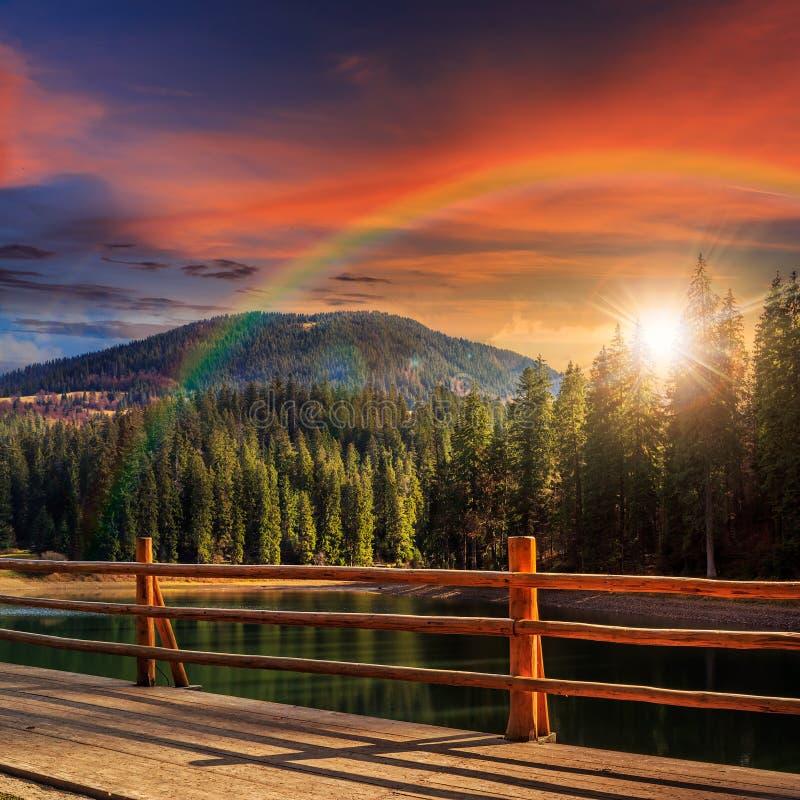 Пристань на озере в сосновом лесе на заходе солнца стоковое изображение rf