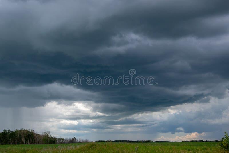 Причаливая облака шторма над канола полем, Саскачеваном, могут стоковая фотография