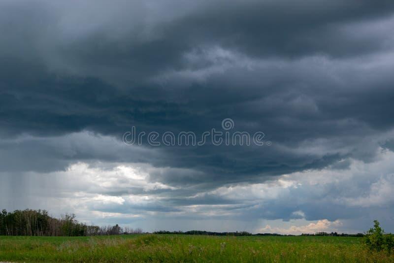 Причаливая облака шторма над канола полем, Саскачеваном, могут стоковые изображения