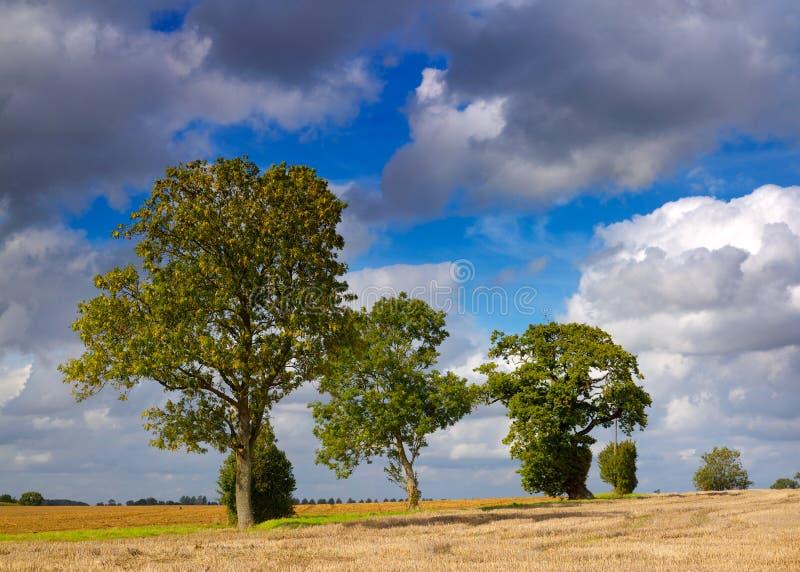 причаливая осень стоковое изображение rf