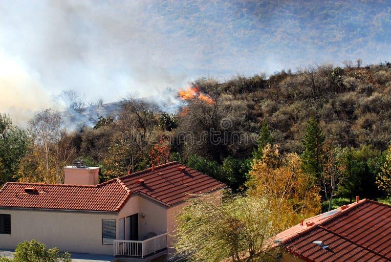 причаливая brushfire стоковые изображения rf