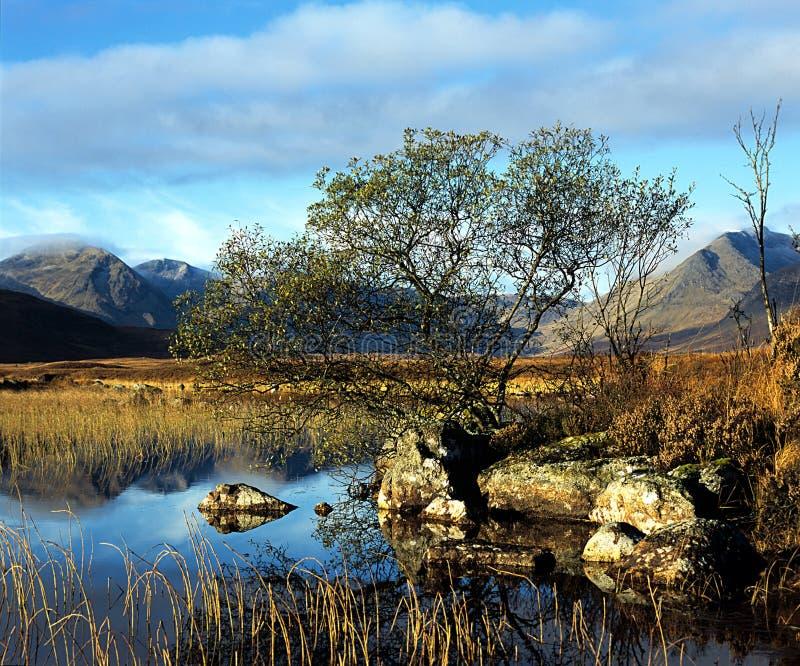 причалите rannoch Шотландию стоковые фотографии rf