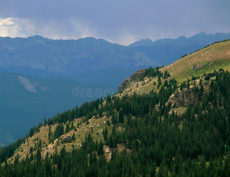 Причаливая шторм в глуши Охотник-сковороды, национальный лес White River, Колорадо стоковые изображения rf