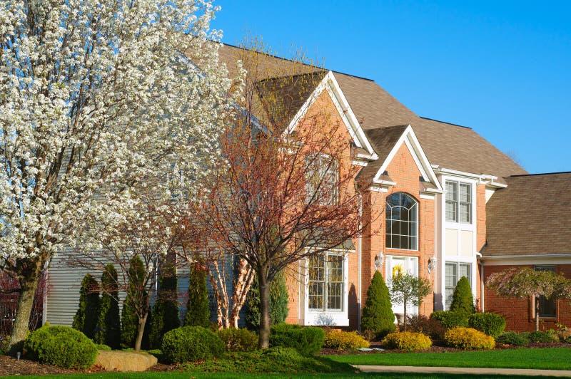 причудливая домашняя весна стоковые изображения