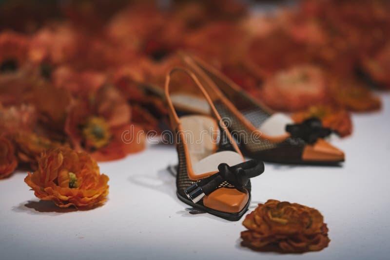 причудливые ботинки стоковое изображение rf