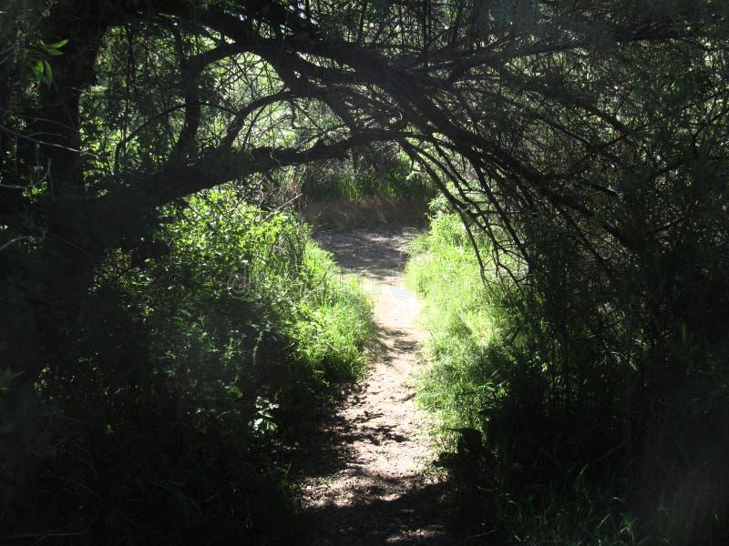 Приюченный путь стоковое изображение