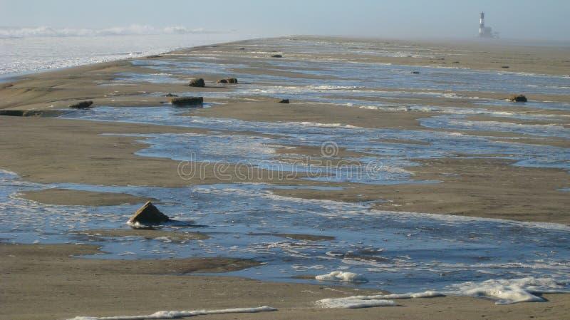 Прилив весны стоковое фото