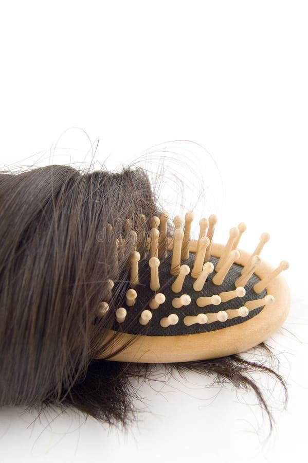 проблема потери волос стоковое фото rf