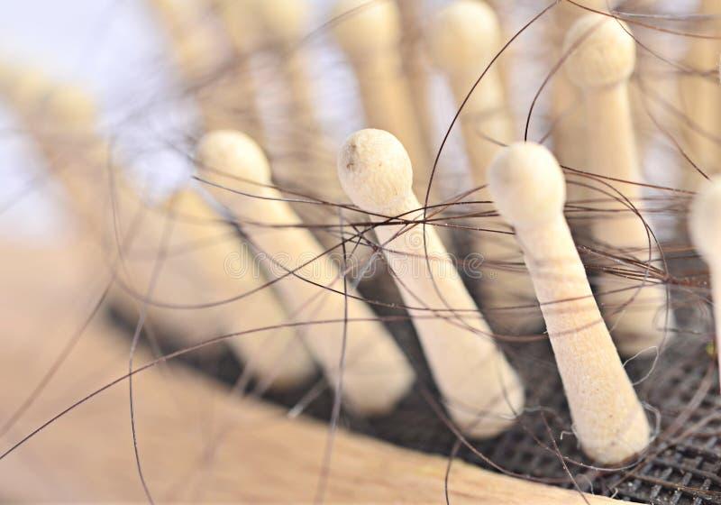 Проблема выпадения волос стоковая фотография