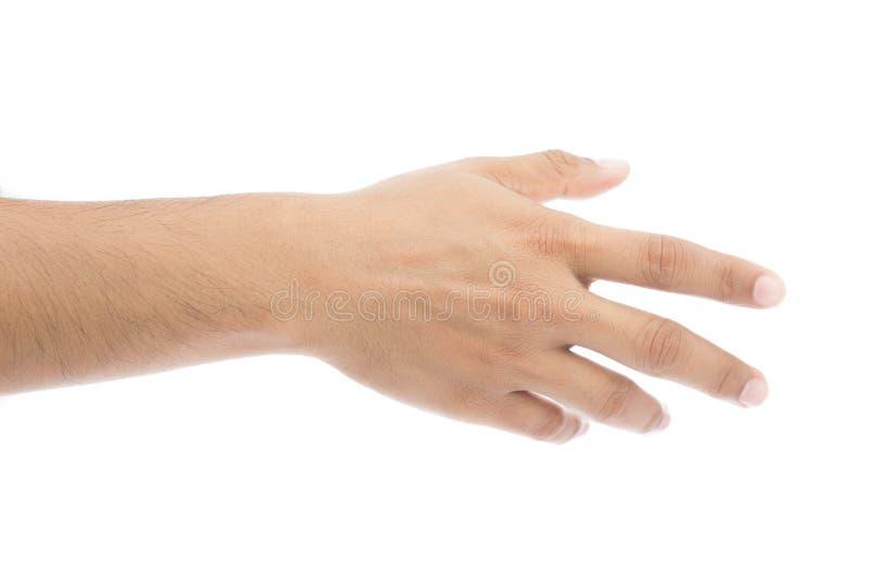 Проверите руку стоковое фото