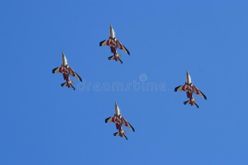 проветрите быка de asas выполняя выставку Португалии красную стоковое фото rf