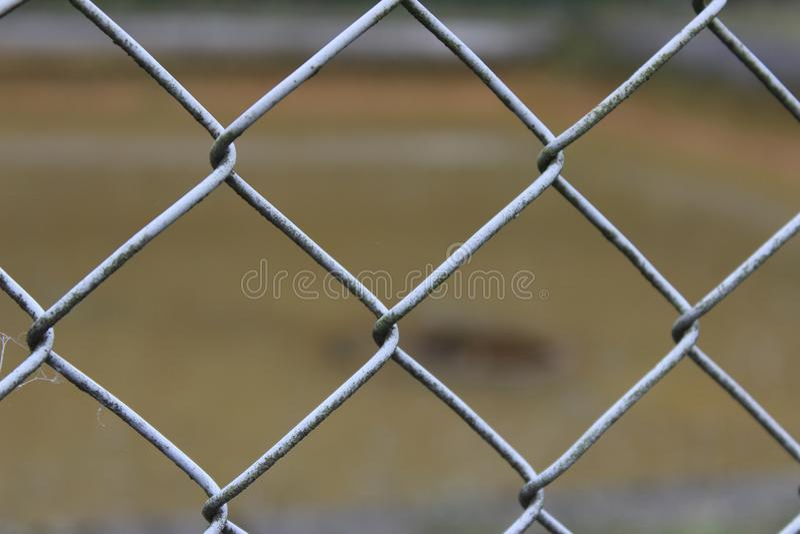 Провод загородки звена цепи стоковые фотографии rf