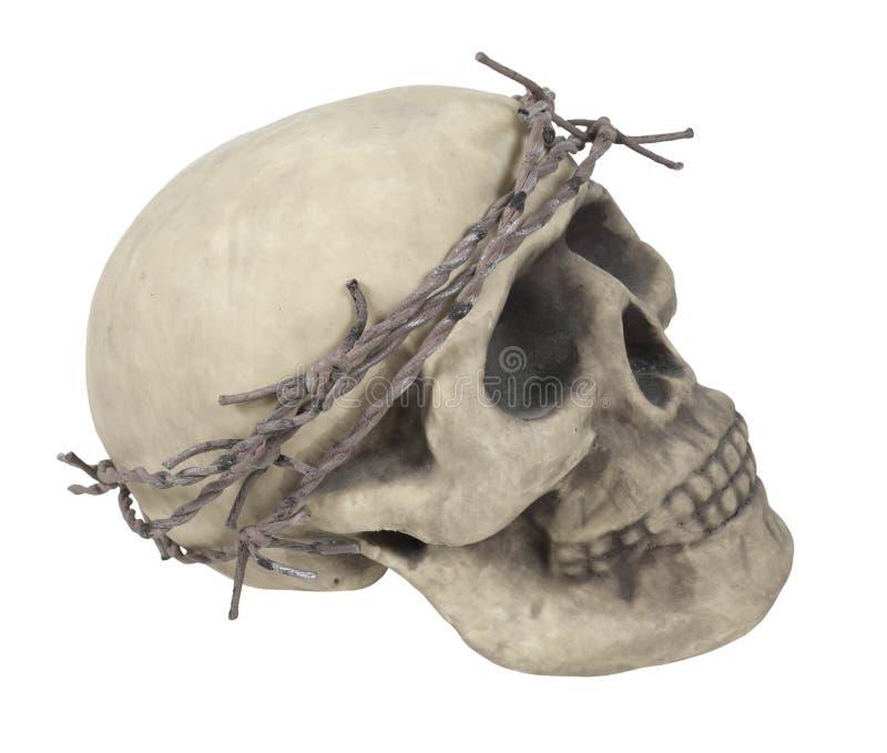 провод колючего черепа кроны нося стоковое изображение
